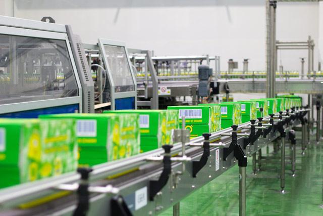 Sản xuất trà túi lọc